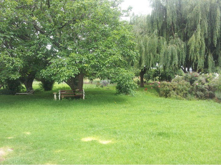 4 Bedroom Farm for sale in Dullstroom ENT0030657 : photo#36