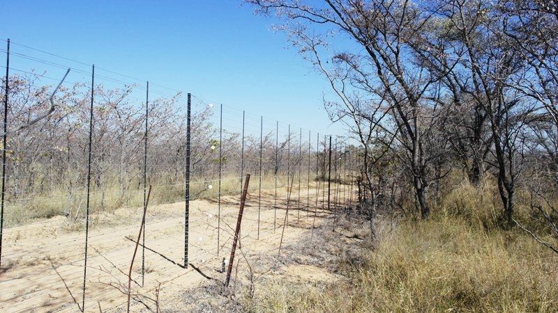 Farm for sale in Vaalwater ENT0032975 : photo#13