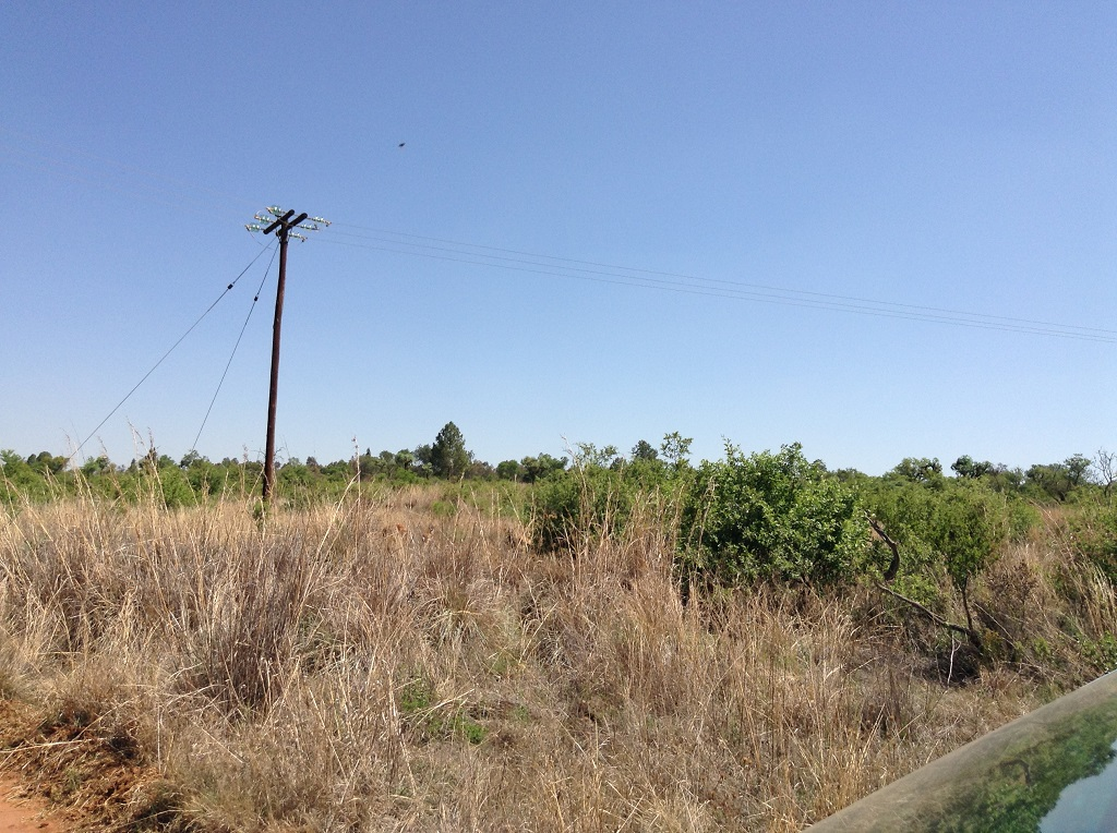 21 HECTARE VACANT BUSHVELD AGRICULTURAL HOLDING IN RIETFONTEIN NO BOREHOLE