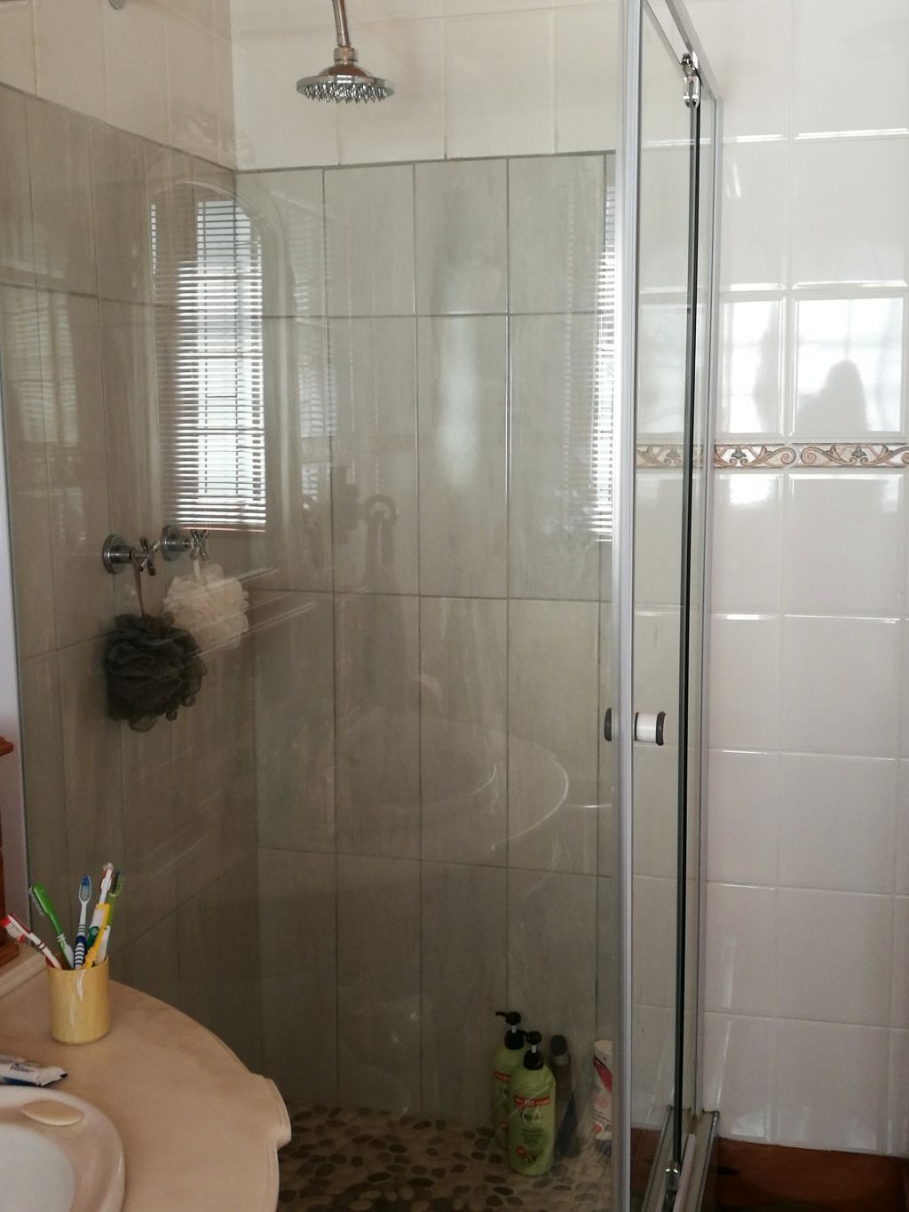 4 Bedroom House for sale in University Estate ENT0082008 : photo#24