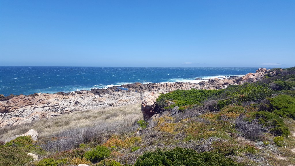 3 Bedroom House for sale in Pringle Bay ENT0079949 : photo#20