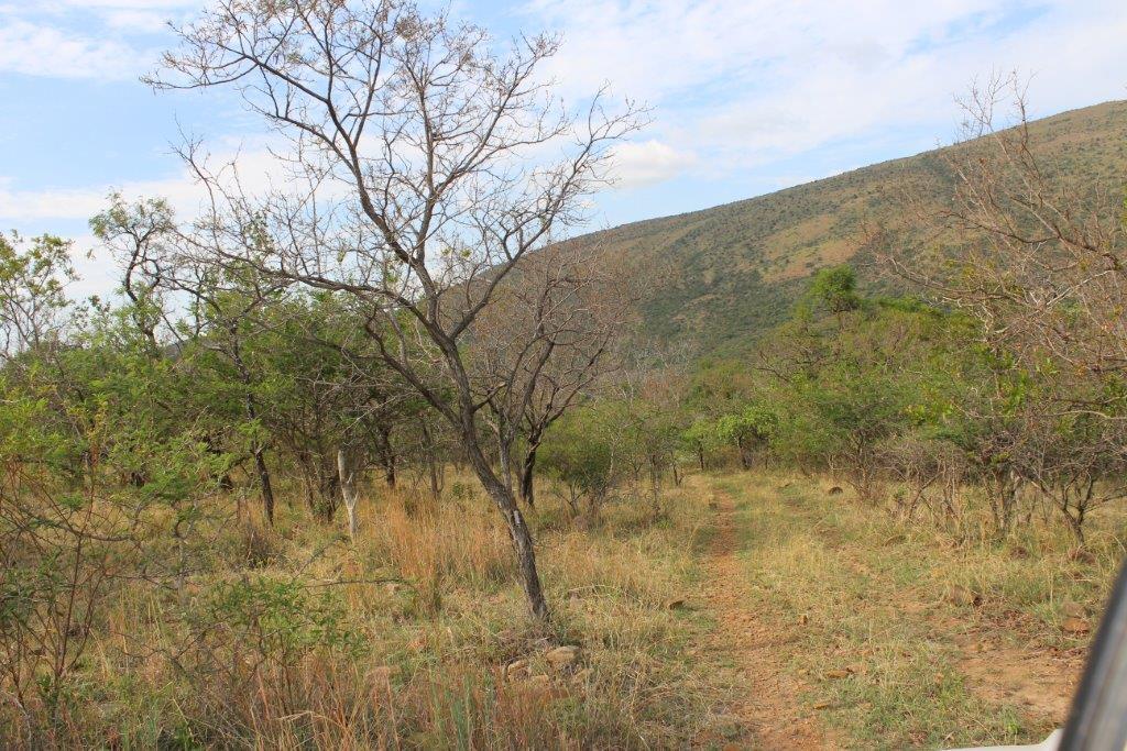 Farm For Sale in Maribashoek A H