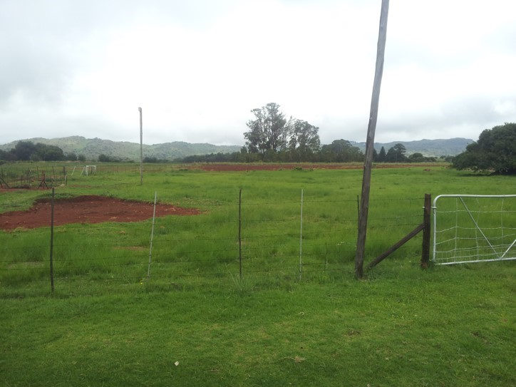 4 Bedroom Farm for sale in Dullstroom ENT0030657 : photo#23