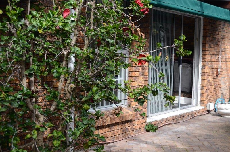 Commercial Space / 3 Bedroom Home