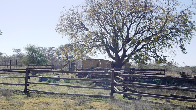 Farm for sale in Vaalwater ENT0032975 : photo#9