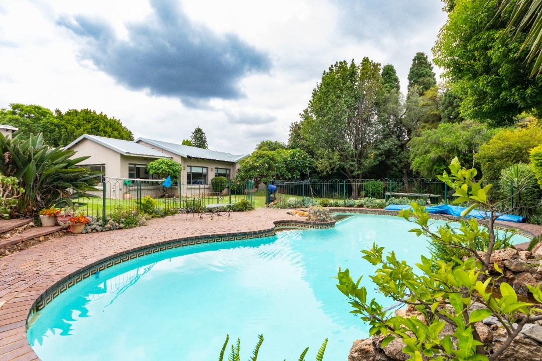 swimming pool view.jpeg