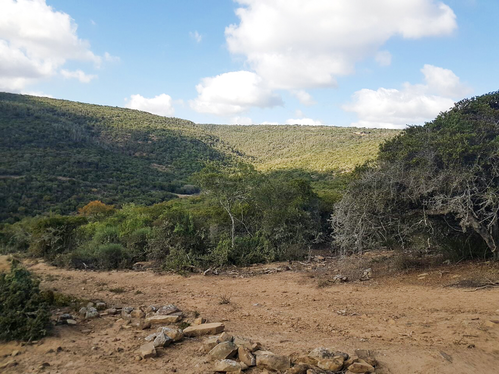 Farm for sale in Grahamstown ENT0030284 : photo#4