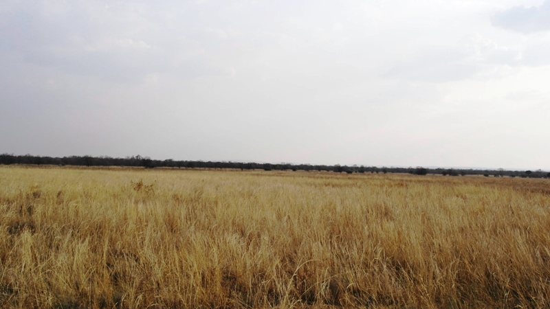 Farm for sale in Vaalwater ENT0001857 : photo#16
