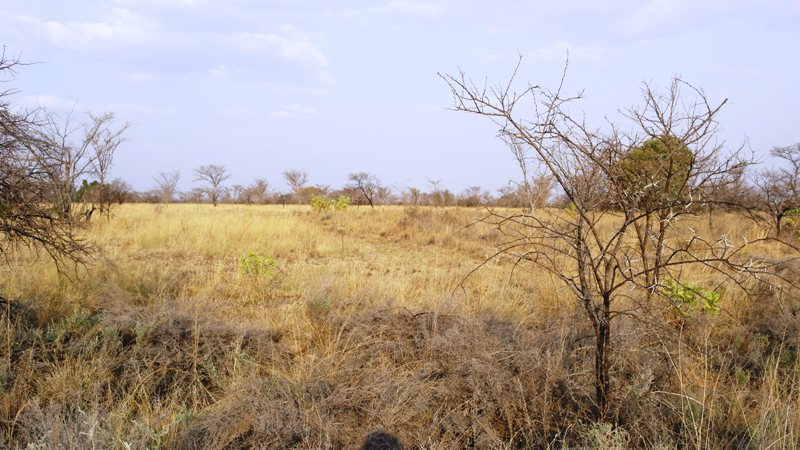 Farm for sale in Vaalwater ENT0001857 : photo#18