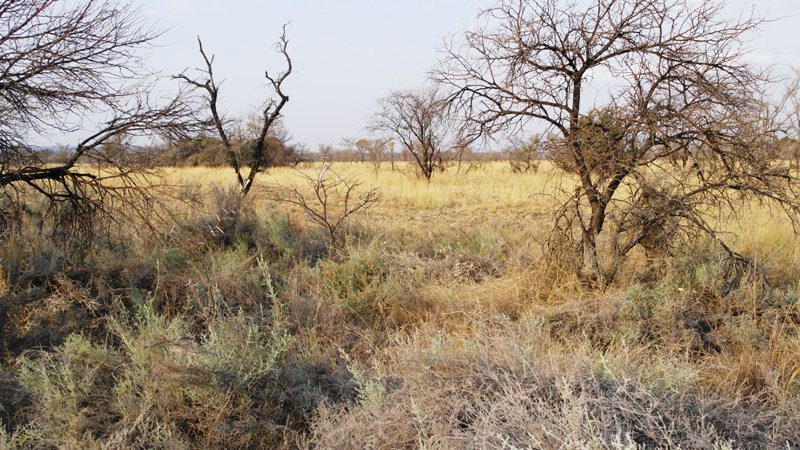 Farm for sale in Vaalwater ENT0001857 : photo#19