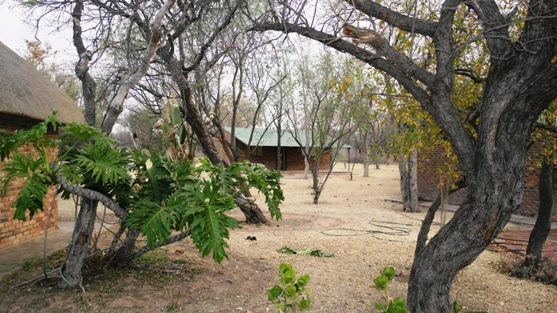 Farm for sale in Vaalwater ENT0001857 : photo#6