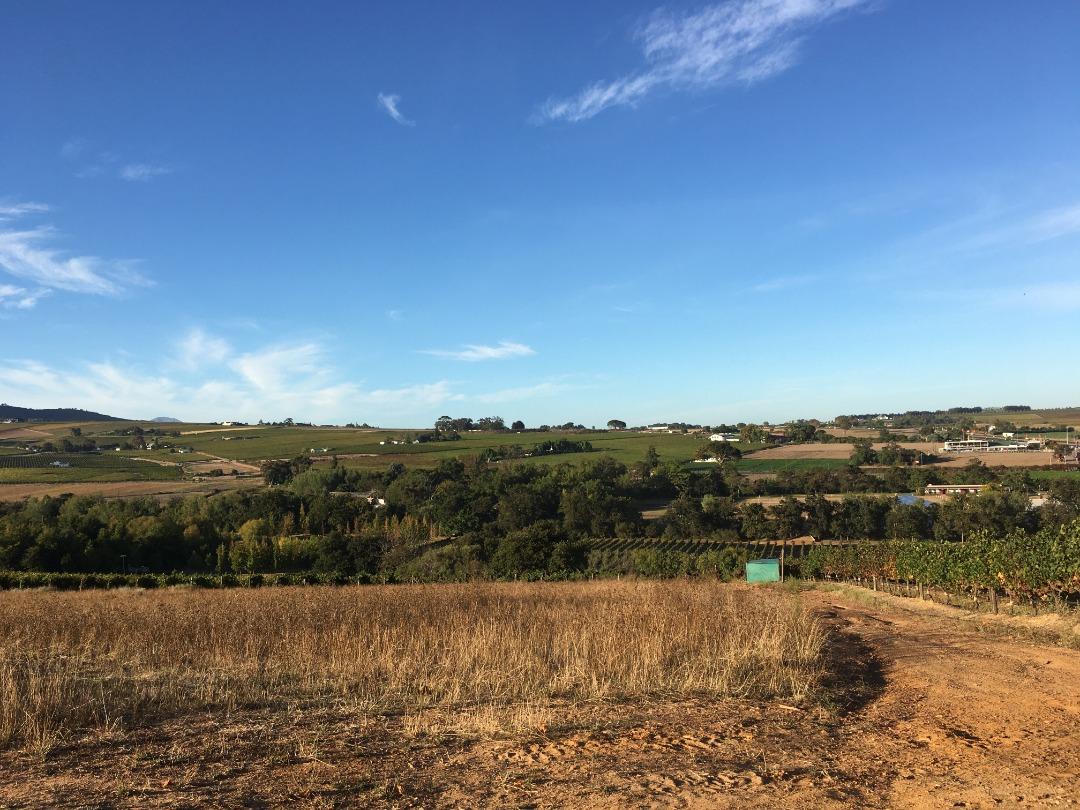 Smallholding for sale in the Stellenbosch Winelands