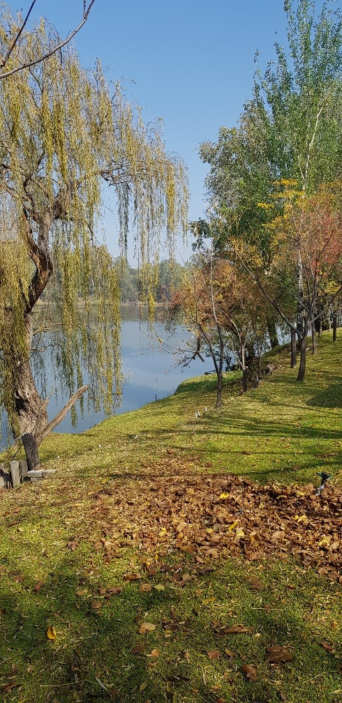 Beautiful river front property, large plot, tranquil environment