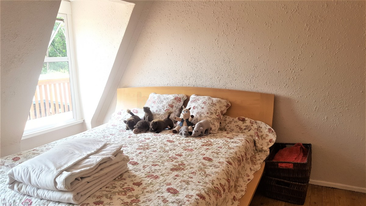 4 Bedroom House for sale in Verwoerdpark ENT0079262 : photo#13