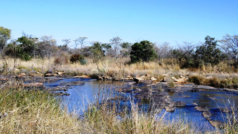 Farm for sale in Vaalwater ENT0032975 : photo#1