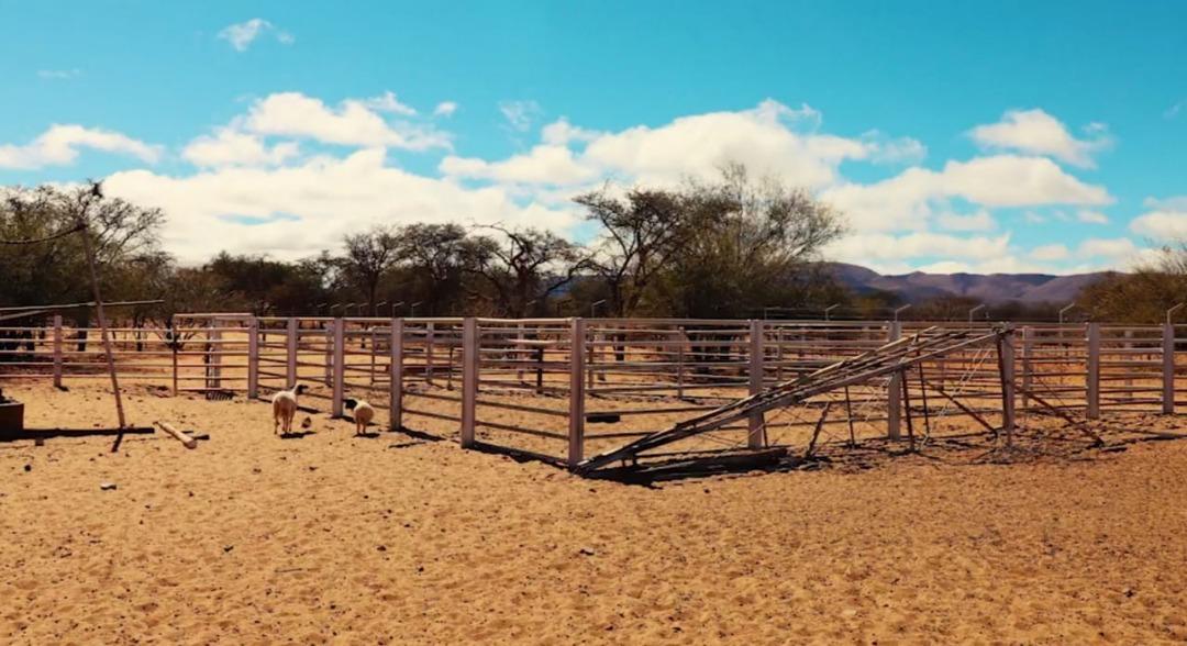 Farm For Sale in Groblershoop