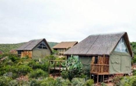 Farm For Sale in Port Elizabeth Rural