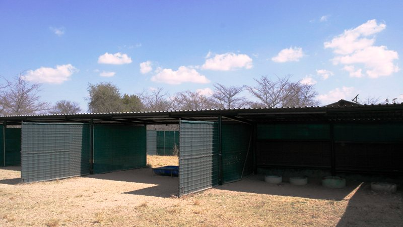 Farm for sale in Vaalwater ENT0049441 : photo#25