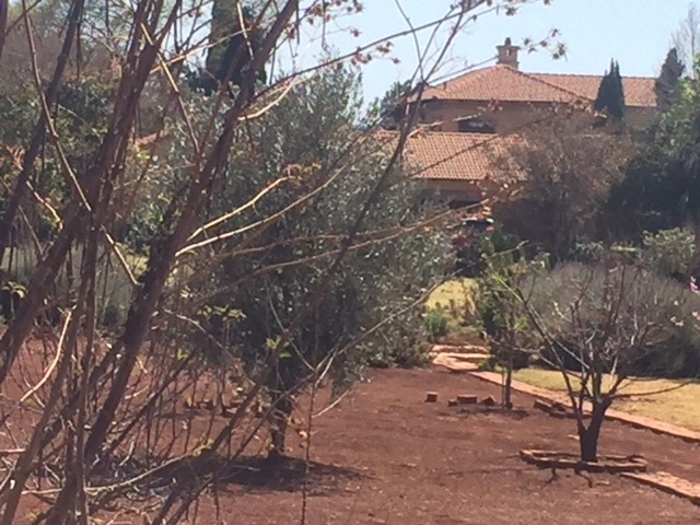 Serenity and convenience -1ha stand for sale in Mooikloof Equestrian estate