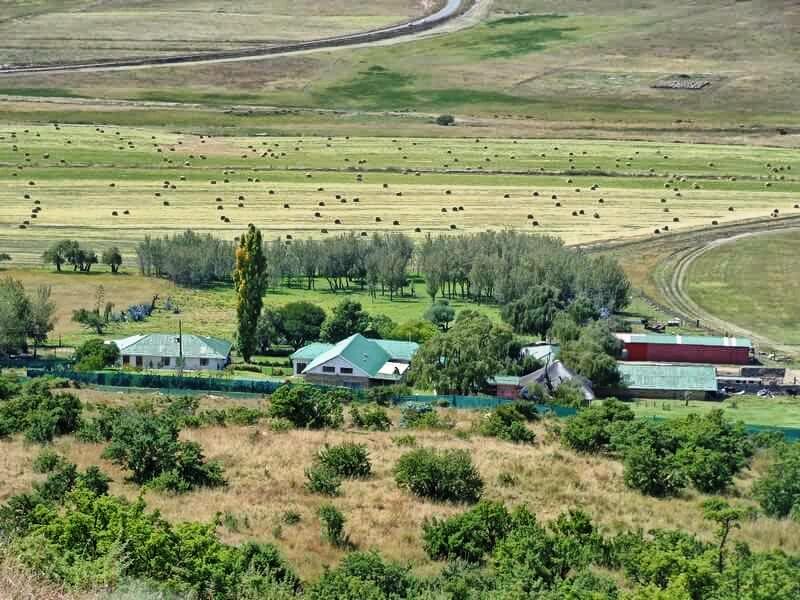 Farm For Sale In Memel