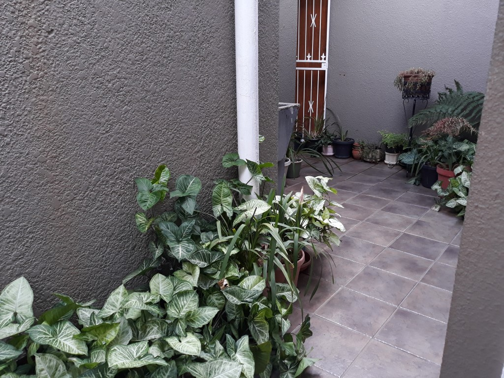 4 Bedroom House for sale in Randhart ENT0083372 : photo#18