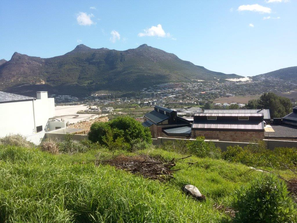 The Last of the best stands in Hout Bay