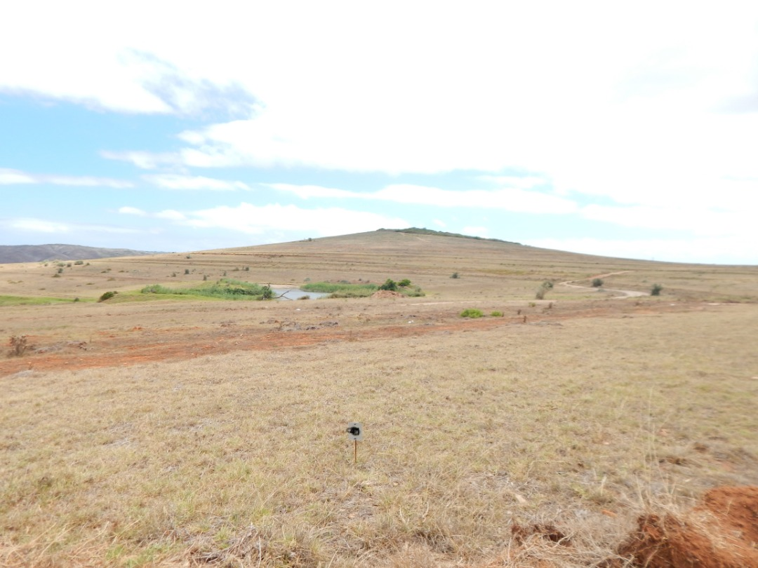 Beautiful peace of land for sale in Outeniquasbosh  Hartenbos