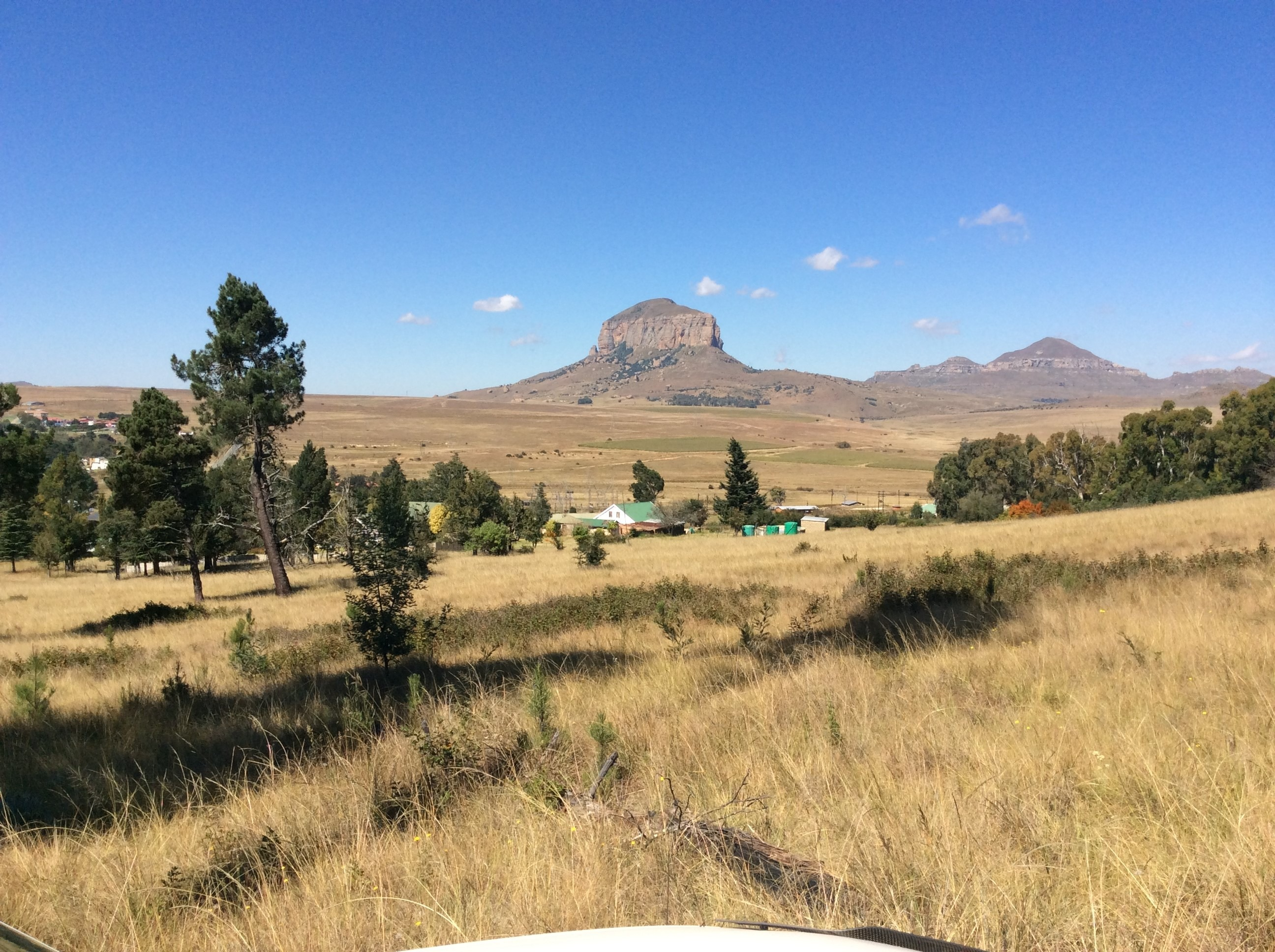 Small Holding For Sale in Harrismith