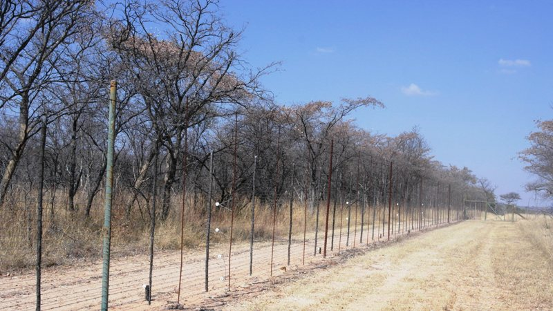 Farm for sale in Vaalwater ENT0049441 : photo#12