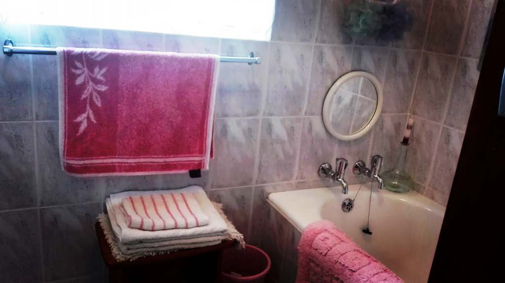4 Bedroom House for sale in Garsfontein ENT0083808 : photo#21