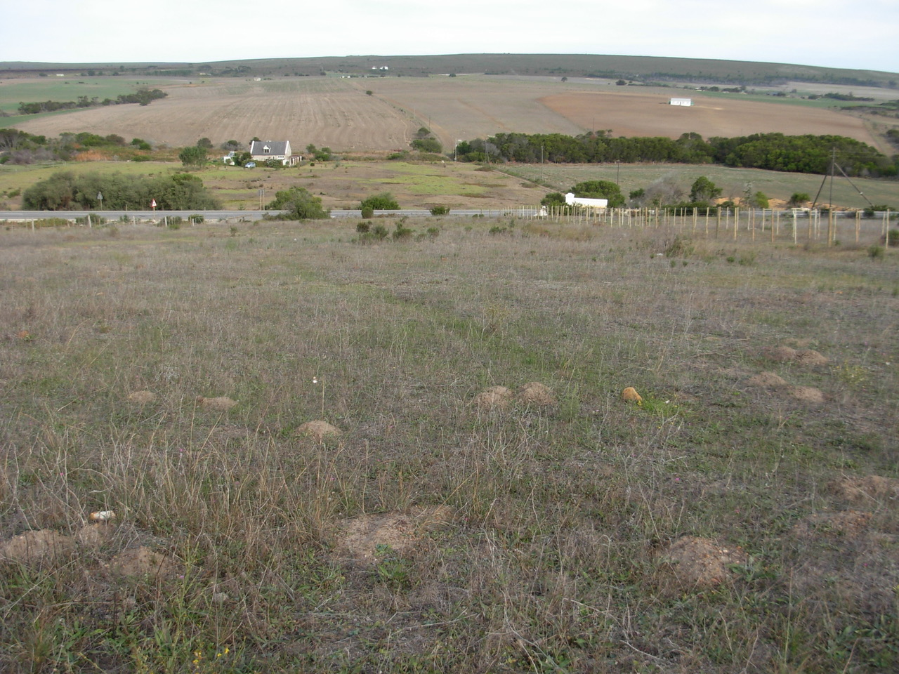 Vacant Land Residential For Sale In Baardskeerdersbos