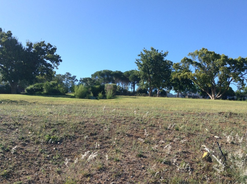 Vacant Land Residential For Sale In La Pastorale
