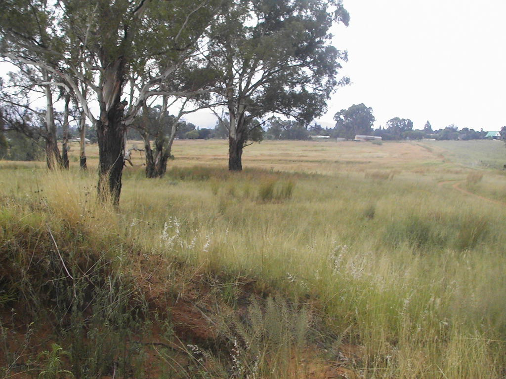 Farm For Sale In Rensburg