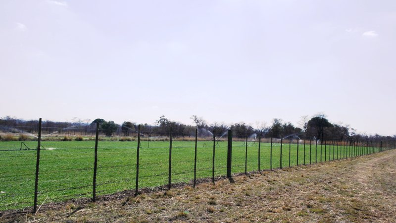 Farm for sale in Vaalwater ENT0049441 : photo#16