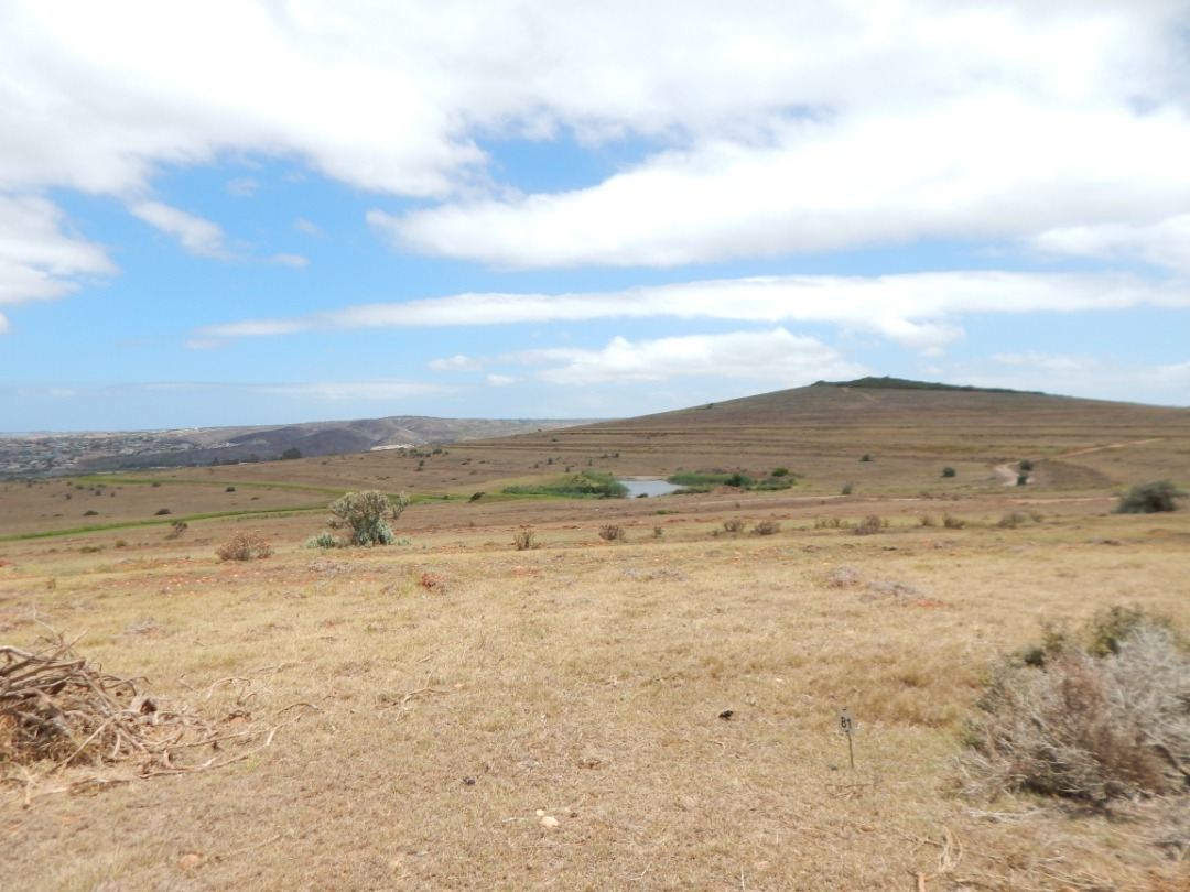 Outeniquasbosch vacant land for sale situated Hartenbos
