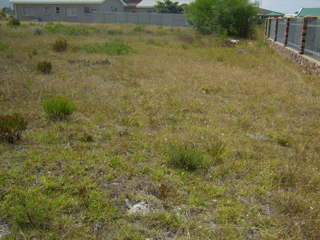 Vacant Land Residential for sale in Franskraal ENT0000718 : photo#6