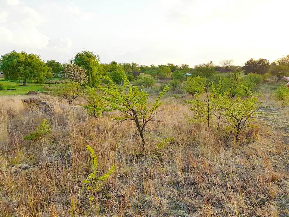 4.25 Ha vacant land in Mooiplaats Pretoria