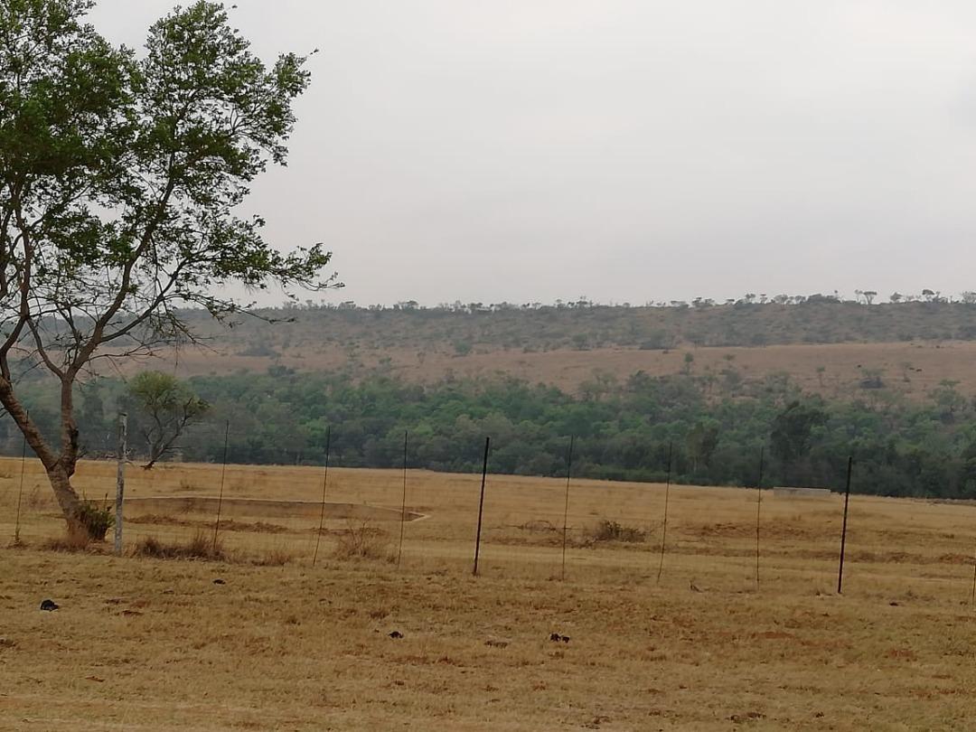 31-Hectare Gem between Cullinan and Pretoria