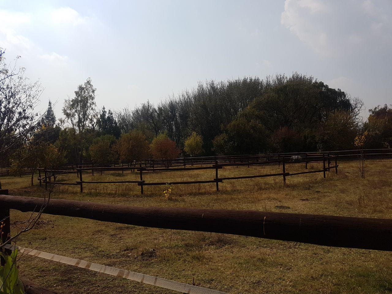 Farm For Sale In Klipriver