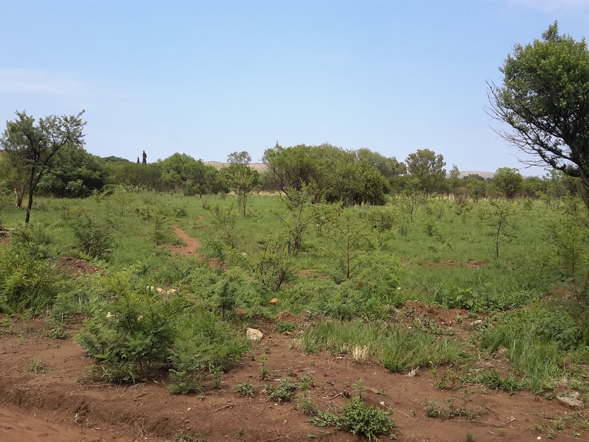 Vacant Land Residential For Sale In Vrede
