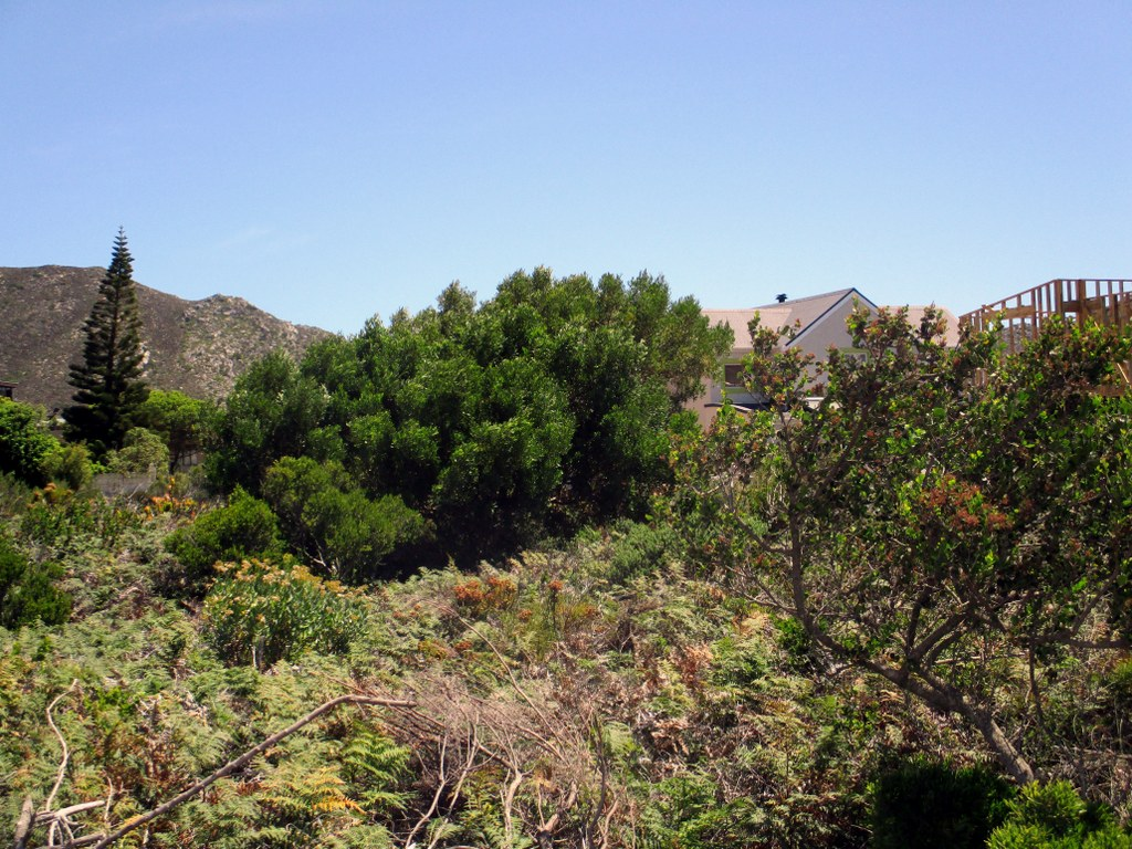 Vacant Land Residential for sale in Pringle Bay ENT0080712 : photo#6