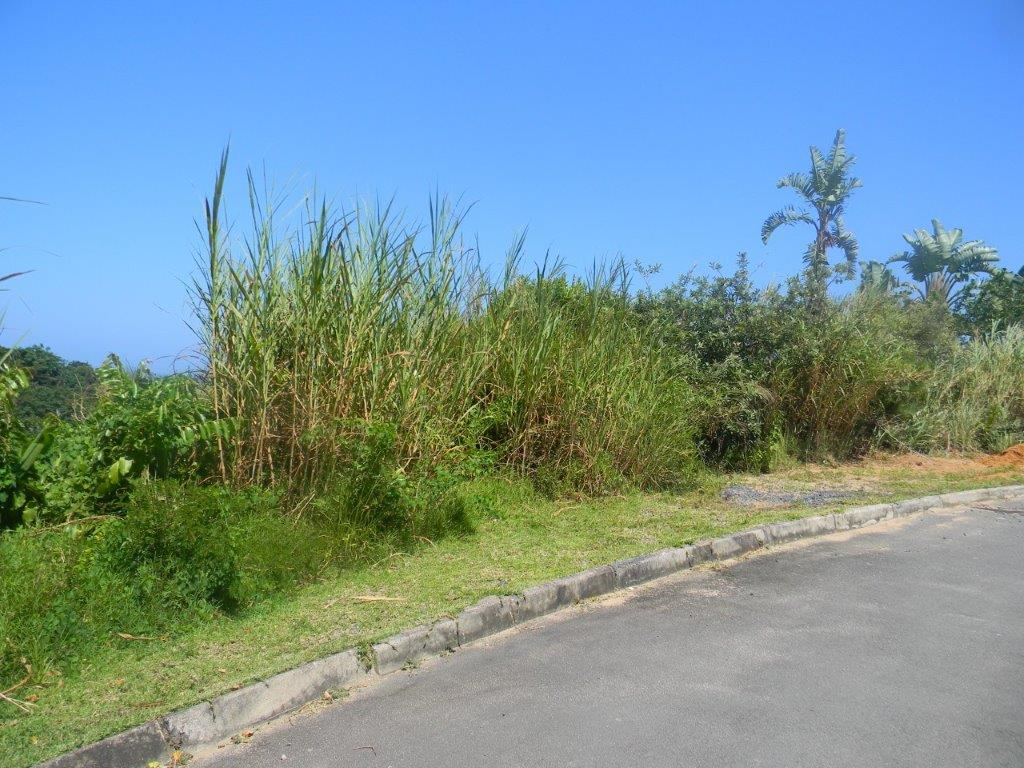 DEVELOPMENT LAND IN ECO LANDSCAPE