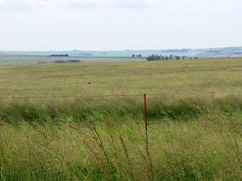 Farm For Sale In Greylingstad