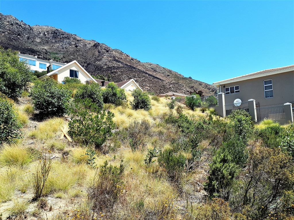 Vacant Land on Mountainside