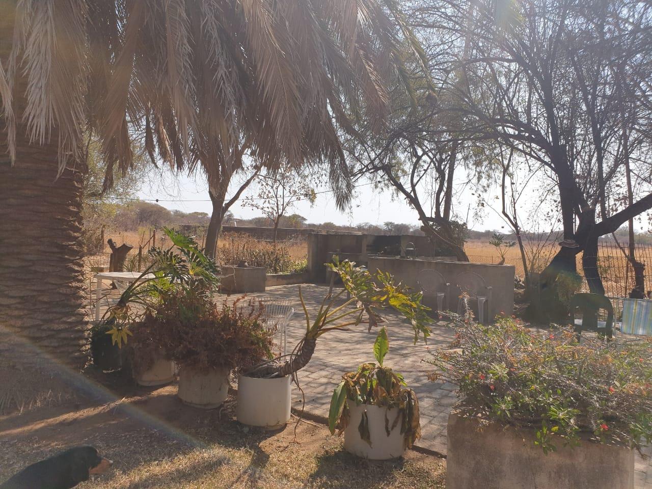 Farm For Sale in Mookgopong