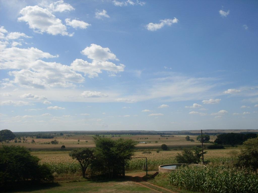 41 HECTARE PRODUCTIVE FARM IN DOORNKRAAL NEAR CULLINAN