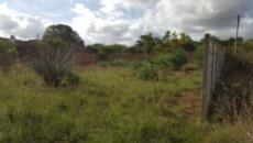 Vacant Land Residential For Sale In Albertinia