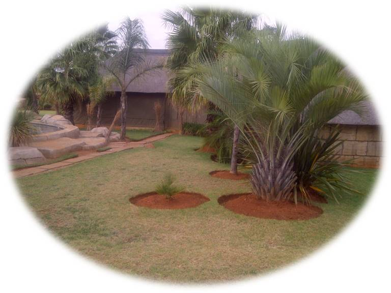 4 Bedroom House for sale in Grootfontein ENT0077759 : photo#3