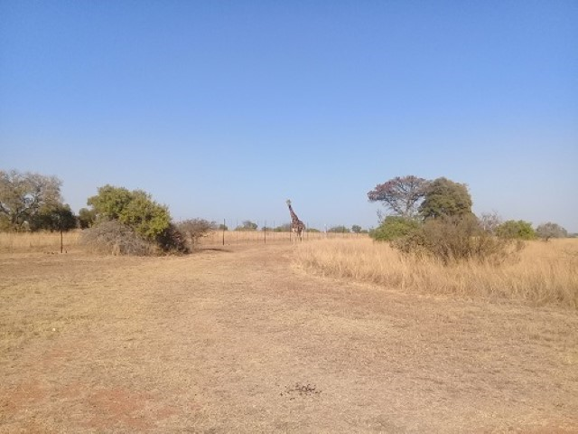 4 BedroomFarm For Sale In Moloto