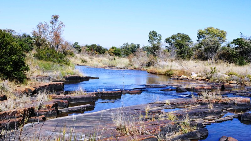 Farm for sale in Vaalwater ENT0032975 : photo#0
